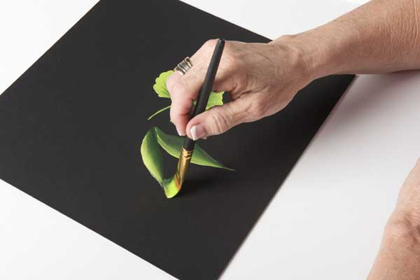 How to Paint a Slider Leaf