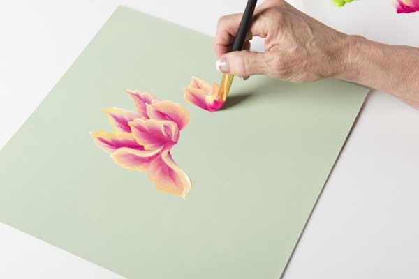 How to Paint Parrot Tulip Buds