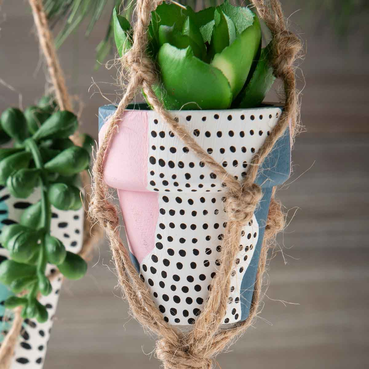 Holiday Succulent Ornaments