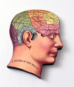 Unique Halloween Decor Idea - Phrenology Head