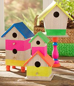 Neon Birdhouses