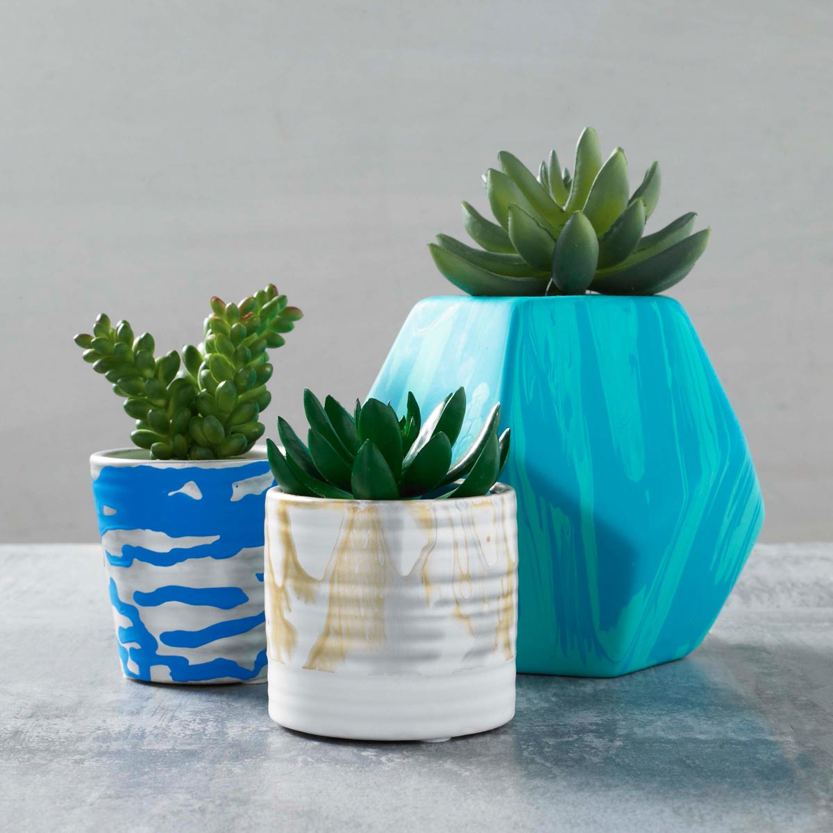 Painted Succulent Containers