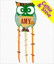 Owl Barrette Holder