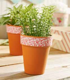 Flower Pots with Furniture Mod Podge