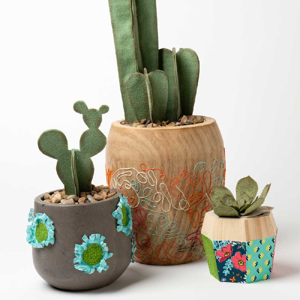 Cactus Planters with Mod Podge Ultra