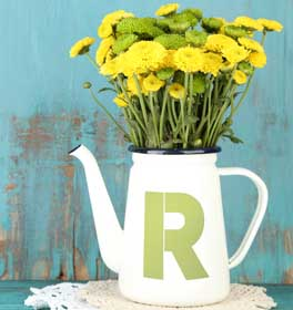 Bold Monogram Watering Can