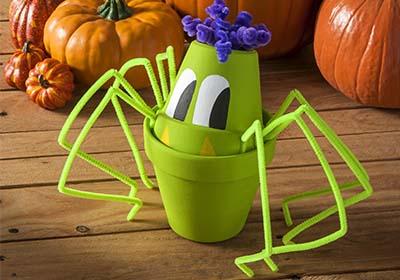 Clay Pot Spider
