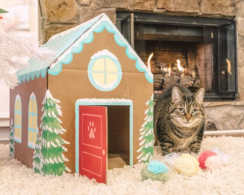 Holiday Christmas Cat House