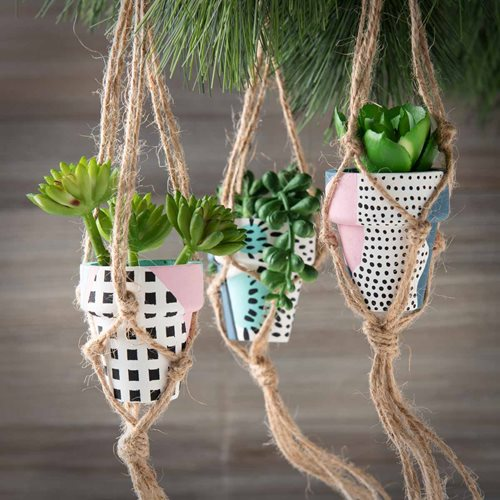 Holiday Succulent Ornaments