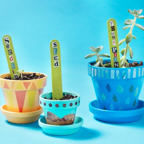 Stages of Plant Life - Terracotta Flower Pots and Plant Tags