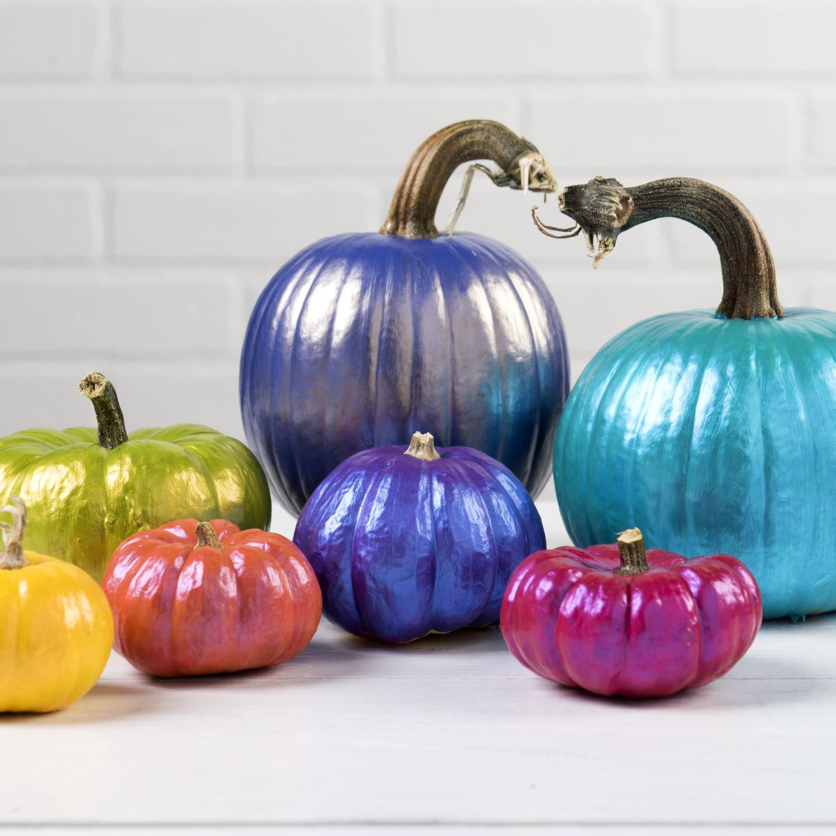 Color Shift Pumpkins