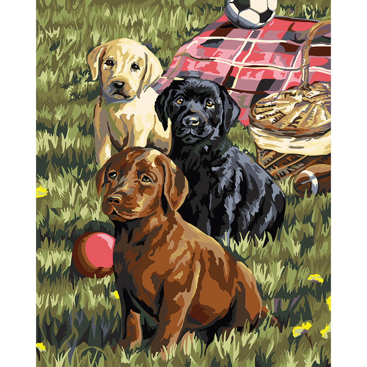 Plaid ® Paint by Number - Puppy Picnic