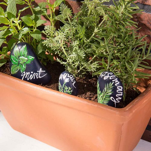 Painted Rock Herb Markers
