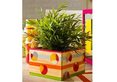 Summer Fun Planter Box