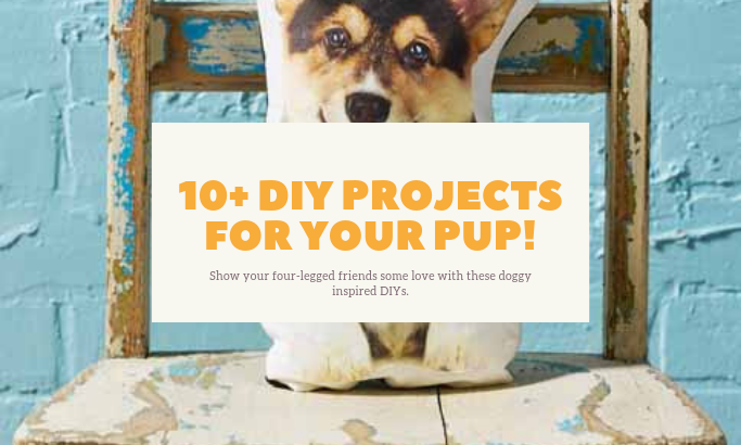 10+ DIY Doggy Inspired Projects
