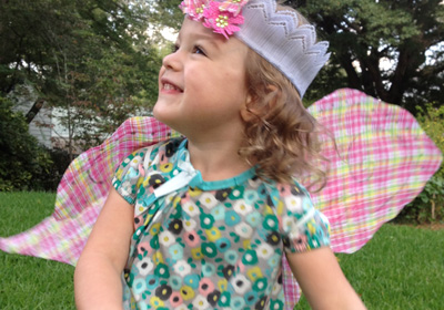 Fairy Princess Wings & Crown Costume