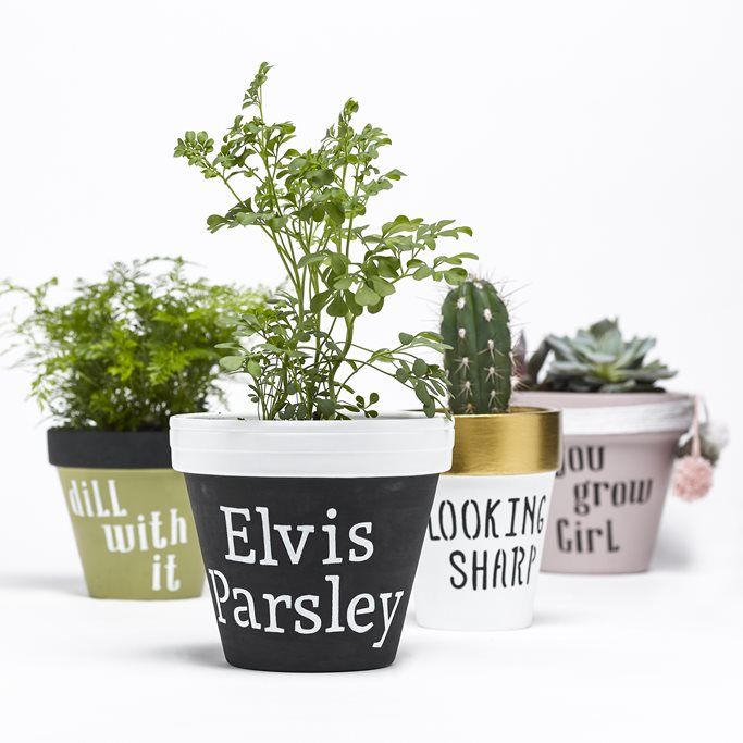 Try These Punny Pots to Jump-start Your Green Thumb