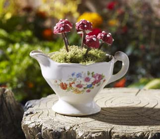 Fairy Garden Inspiration - Mushroom Teacup