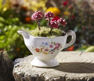 Fairy Garden Inspiration - Mushroom Teacup