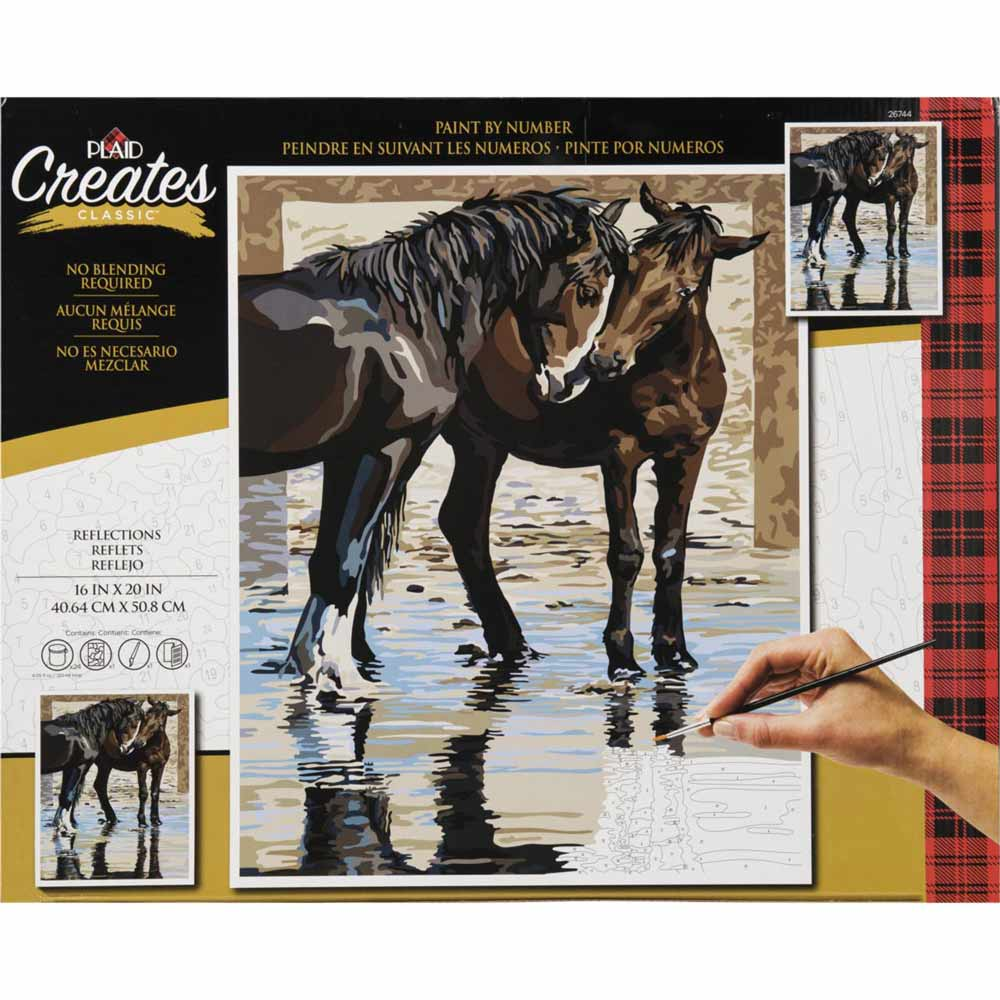 Plaid ® Paint by Number - Reflections