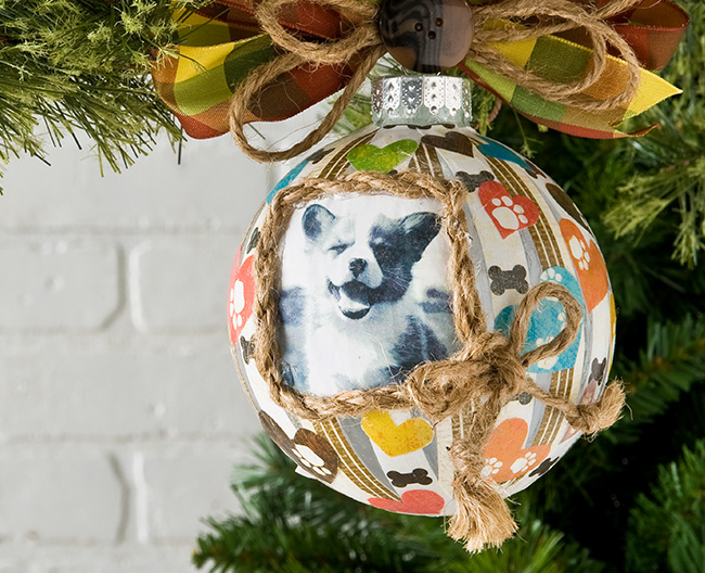 Photo Transfer Holiday Project for Pets
