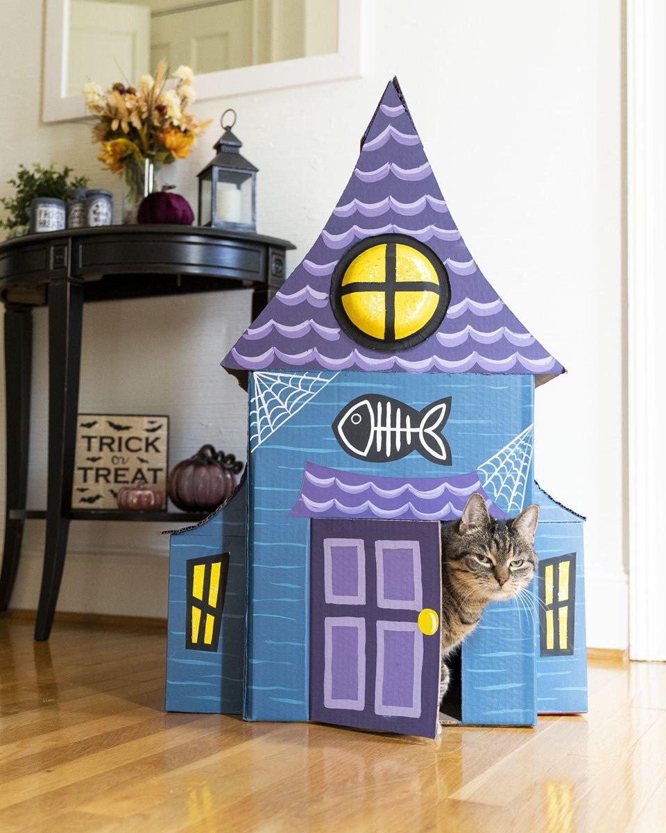 Haunted Cat House