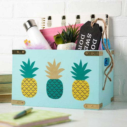 Box Organizer for Graduate