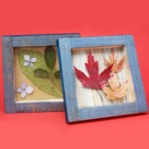 Sealed Leaves and Flowers with Mod Podge