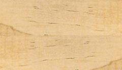 Delta Soy Stain - Cedar, 4 oz.