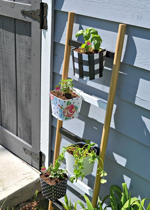 container-herb-garden-ideas.jpg