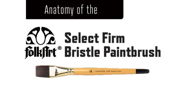 Anatomy of the FolkArt Select Firm Bristle Paintbrush