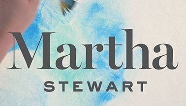 Learn about the Martha Stewart craft product system
