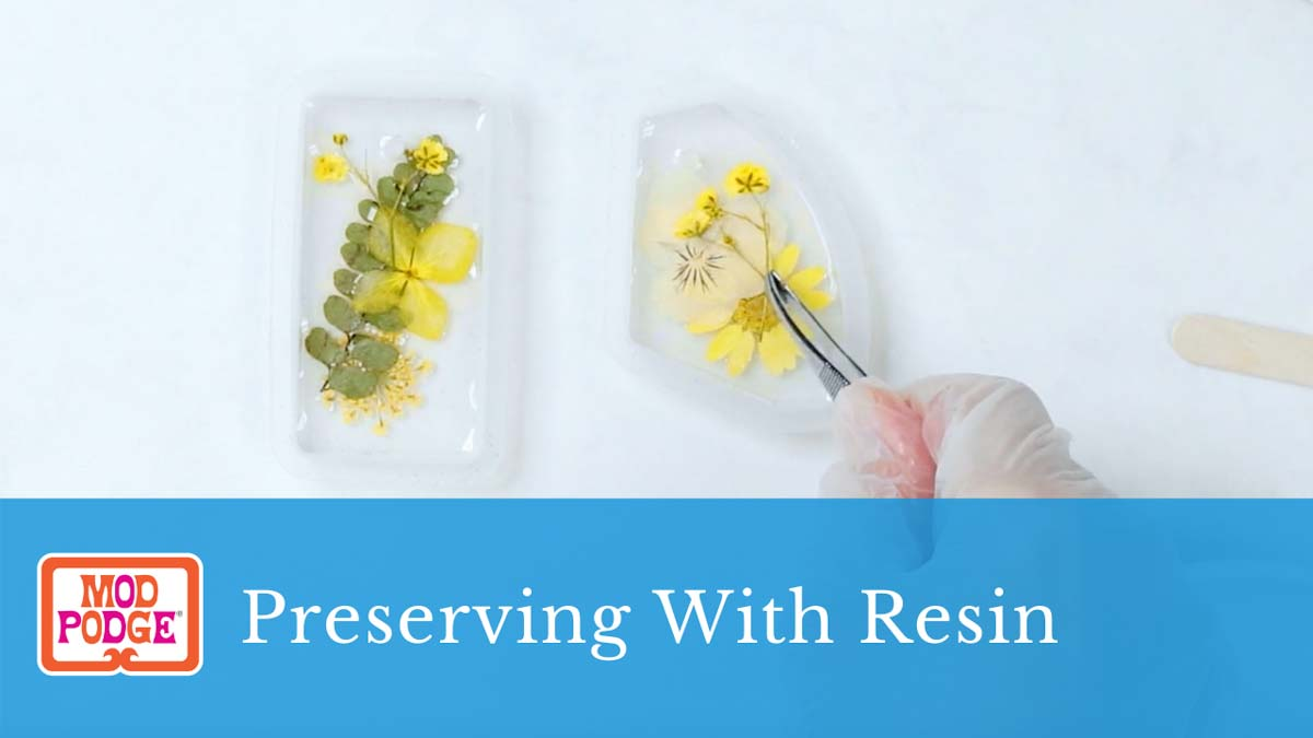 Preserving with Mod Podge Resin