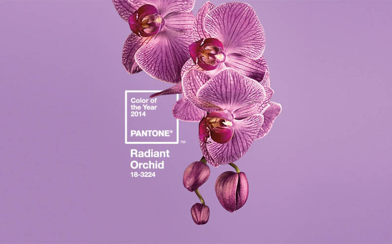 Color of the Year – Radiant Orchid
