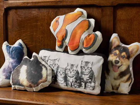 How to Photo Transfer: DIY Pet Pillows